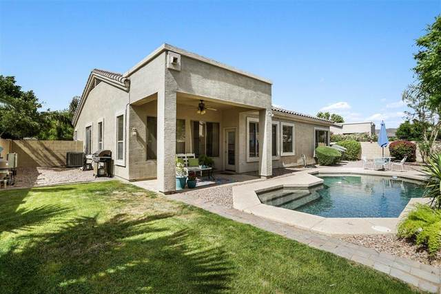 6781 W Abraham Lane, Glendale, AZ 85308 (MLS #6225655) :: Yost Realty Group at RE/MAX Casa Grande