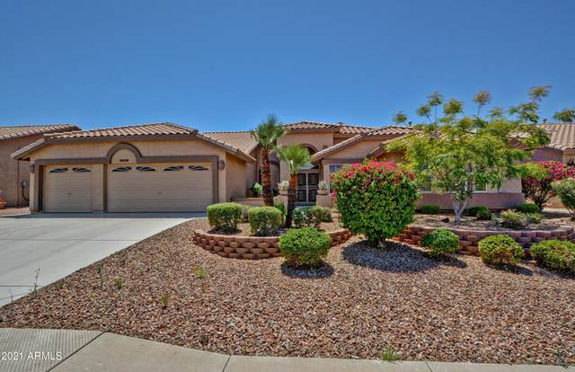 8313 W Tonto Lane, Peoria, AZ 85382 (MLS #6225662) :: Devor Real Estate Associates