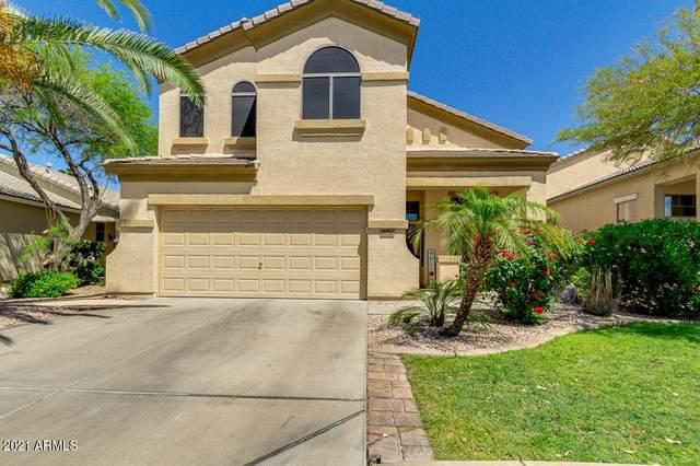 17156 W Young Street, Surprise, AZ 85388 (MLS #6225675) :: The Laughton Team