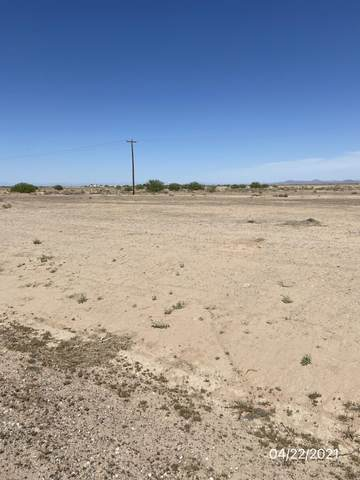 4535 N Zapotec Avenue, Eloy, AZ 85131 (MLS #6225691) :: The Laughton Team