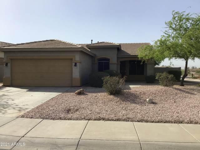 18378 W Mcneil Street, Goodyear, AZ 85338 (MLS #6225699) :: Yost Realty Group at RE/MAX Casa Grande