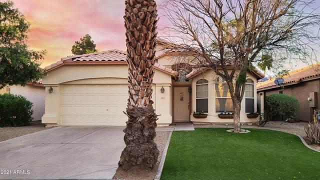 3856 E Stanford Avenue, Gilbert, AZ 85234 (MLS #6225703) :: Yost Realty Group at RE/MAX Casa Grande