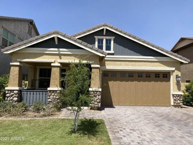 3122 E Appaloosa Road, Gilbert, AZ 85296 (MLS #6225705) :: Yost Realty Group at RE/MAX Casa Grande
