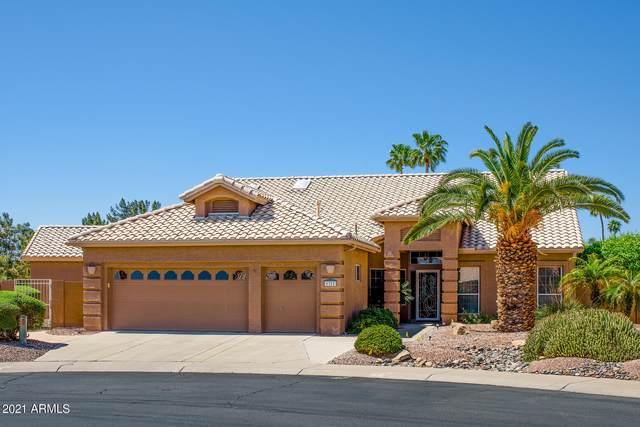 5352 S Amberwood Drive, Sun Lakes, AZ 85248 (MLS #6225742) :: Midland Real Estate Alliance