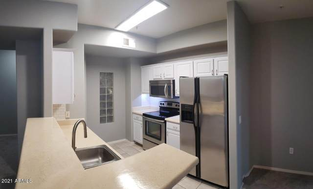 420 W 1ST Street #219, Tempe, AZ 85281 (MLS #6225748) :: Sheli Stoddart Team | M.A.Z. Realty Professionals