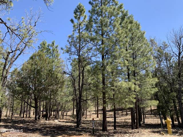 1349 Trails End, Happy Jack, AZ 86024 (MLS #6225763) :: Service First Realty
