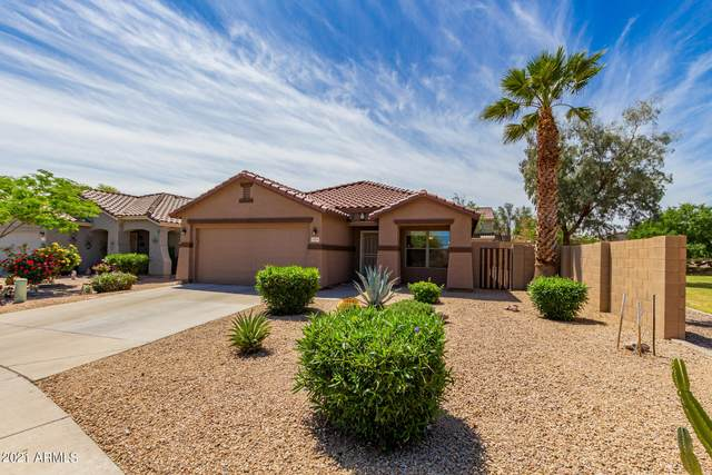 2959 W Allens Peak Drive, San Tan Valley, AZ 85142 (MLS #6225796) :: Yost Realty Group at RE/MAX Casa Grande