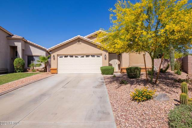 2518 N 114TH Lane, Avondale, AZ 85392 (MLS #6225845) :: Yost Realty Group at RE/MAX Casa Grande