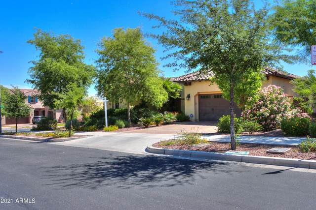 4607 N Arbor Way, Buckeye, AZ 85396 (MLS #6225859) :: Yost Realty Group at RE/MAX Casa Grande
