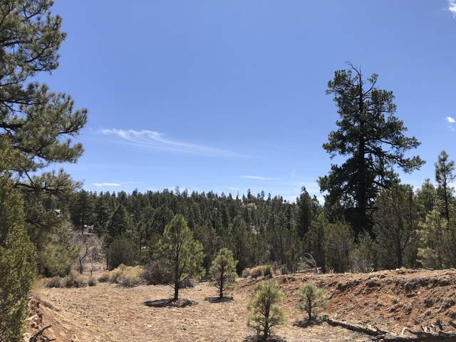 2865 Rockledge Road, Overgaard, AZ 85933 (MLS #6225861) :: The Riddle Group