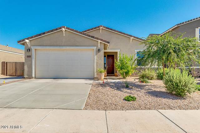 39977 W Brandt Drive, Maricopa, AZ 85138 (MLS #6225901) :: The Laughton Team