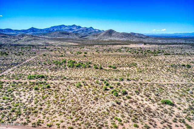 41 AC Rucker Canyon Road, Elfrida, AZ 85610 (MLS #6225924) :: Yost Realty Group at RE/MAX Casa Grande