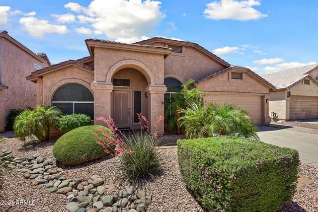 16818 S 42ND Street, Phoenix, AZ 85048 (MLS #6225947) :: The Luna Team