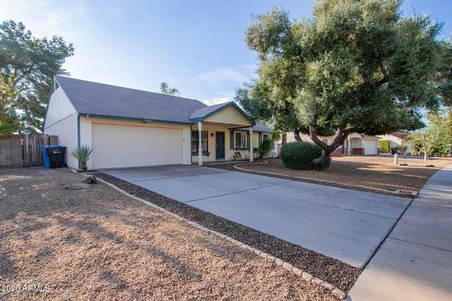 6427 E Grandview Drive, Scottsdale, AZ 85254 (MLS #6225988) :: Yost Realty Group at RE/MAX Casa Grande