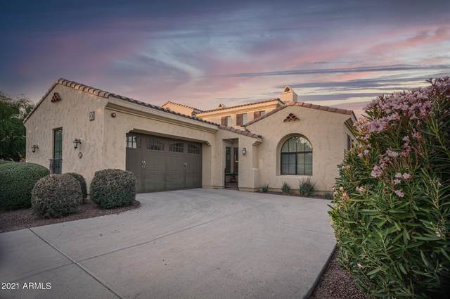 3653 N Hooper Court, Buckeye, AZ 85396 (MLS #6226004) :: The Newman Team