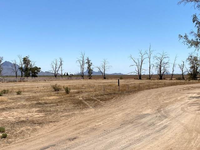 4121 E Appaloosa Drive, Eloy, AZ 85131 (MLS #6226092) :: Service First Realty