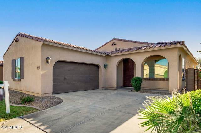 3640 S Arizona Place, Chandler, AZ 85286 (MLS #6226163) :: Yost Realty Group at RE/MAX Casa Grande