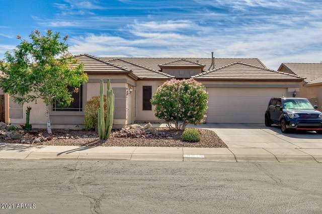 19715 N Bustos Way, Maricopa, AZ 85138 (#6226164) :: The Josh Berkley Team