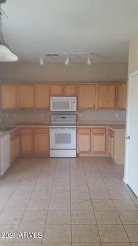1223 W Mesquite Tree Lane, San Tan Valley, AZ 85143 (MLS #6226174) :: Yost Realty Group at RE/MAX Casa Grande