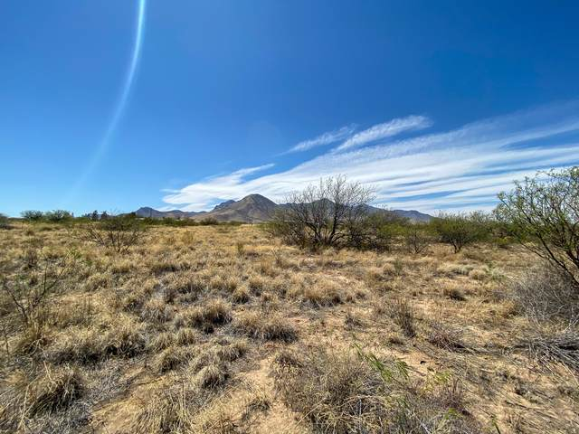 000 S Paint Ranch Road, Hereford, AZ 85615 (MLS #6226217) :: TIBBS Realty
