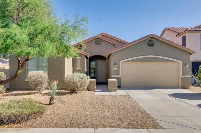 43207 W Lindgren Drive, Maricopa, AZ 85138 (MLS #6226228) :: Yost Realty Group at RE/MAX Casa Grande