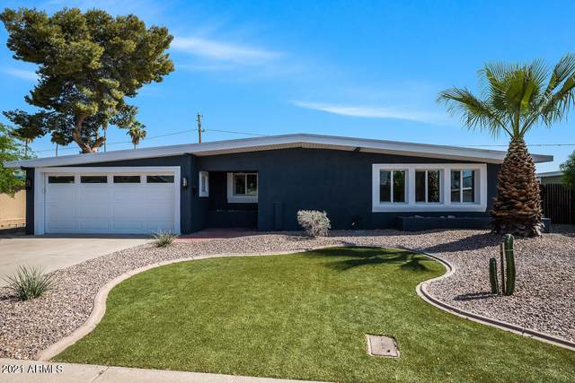 3637 E Paradise Drive, Phoenix, AZ 85028 (MLS #6226290) :: Yost Realty Group at RE/MAX Casa Grande