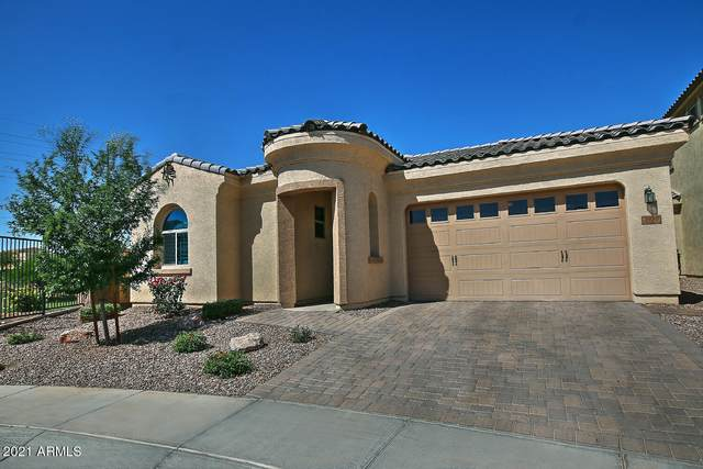 3950 S Bell Place, Chandler, AZ 85286 (MLS #6226300) :: Yost Realty Group at RE/MAX Casa Grande