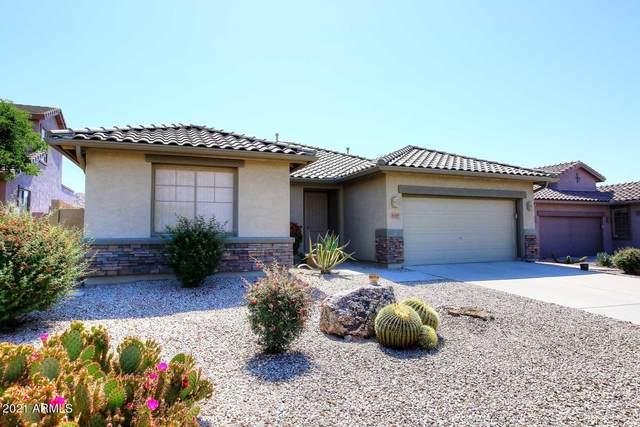 4189 S Hackberry Trail, Gold Canyon, AZ 85118 (MLS #6226369) :: The Ellens Team