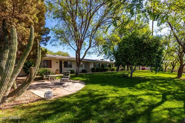 10249 N 108TH Avenue, Sun City, AZ 85351 (#6226437) :: Luxury Group - Realty Executives Arizona Properties