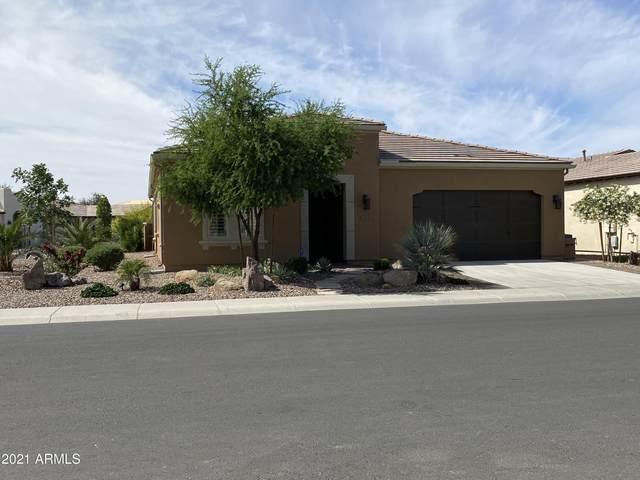 36074 N Stoneware Drive, San Tan Valley, AZ 85140 (MLS #6226448) :: Yost Realty Group at RE/MAX Casa Grande