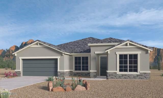 44581 W Palo Nuez Street, Maricopa, AZ 85138 (MLS #6226501) :: The Luna Team