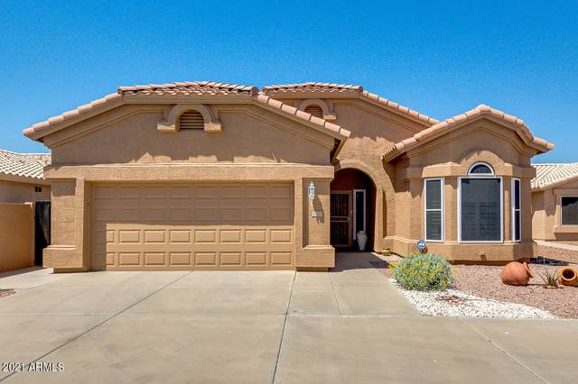 11537 W Chuckwalla Court, Surprise, AZ 85378 (#6226525) :: The Josh Berkley Team