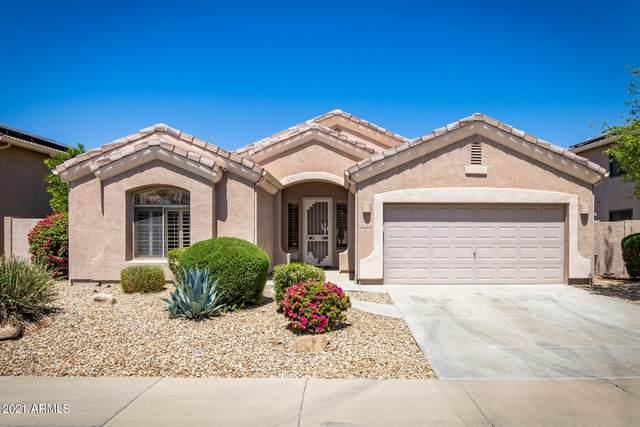 13132 W Marlette Avenue, Litchfield Park, AZ 85340 (MLS #6226526) :: The Luna Team