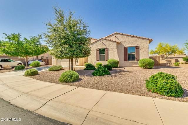 18252 W Mackenzie Drive, Goodyear, AZ 85395 (MLS #6226538) :: My Home Group