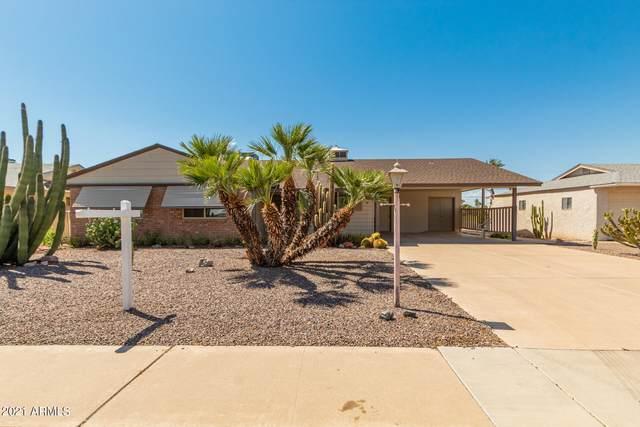 11408 N Balboa Drive, Sun City, AZ 85351 (#6226555) :: The Josh Berkley Team