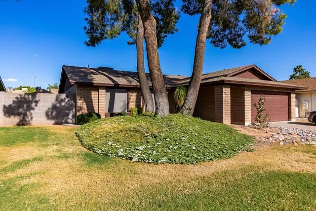 917 S Gentry Circle, Mesa, AZ 85204 (MLS #6226570) :: Yost Realty Group at RE/MAX Casa Grande