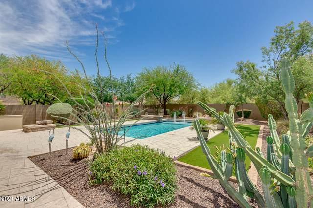 3815 E Matthew Drive, Phoenix, AZ 85050 (MLS #6226572) :: Conway Real Estate