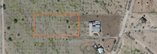 433XX W Mitchell Drive, Tonopah, AZ 85354 (MLS #6226575) :: The Riddle Group