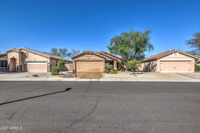 23439 N 21ST Way, Phoenix, AZ 85024 (MLS #6226596) :: Yost Realty Group at RE/MAX Casa Grande