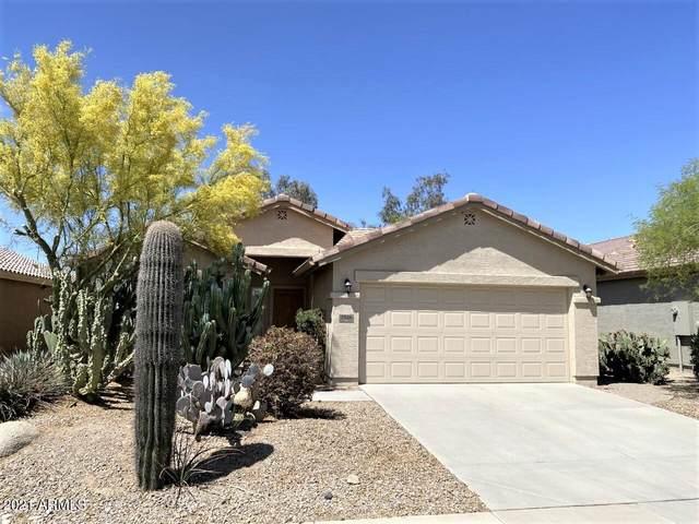 2584 E Desert Wind Drive, Casa Grande, AZ 85194 (MLS #6226653) :: The Copa Team | The Maricopa Real Estate Company