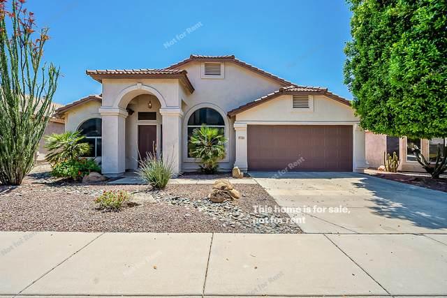 1105 E Montoya Lane, Phoenix, AZ 85024 (MLS #6226672) :: The Luna Team