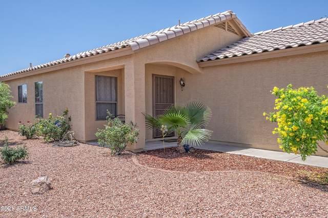 15703 W Young Street, Surprise, AZ 85374 (#6226704) :: The Josh Berkley Team