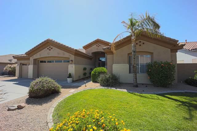 22106 N 81st Drive, Peoria, AZ 85383 (MLS #6226740) :: Yost Realty Group at RE/MAX Casa Grande