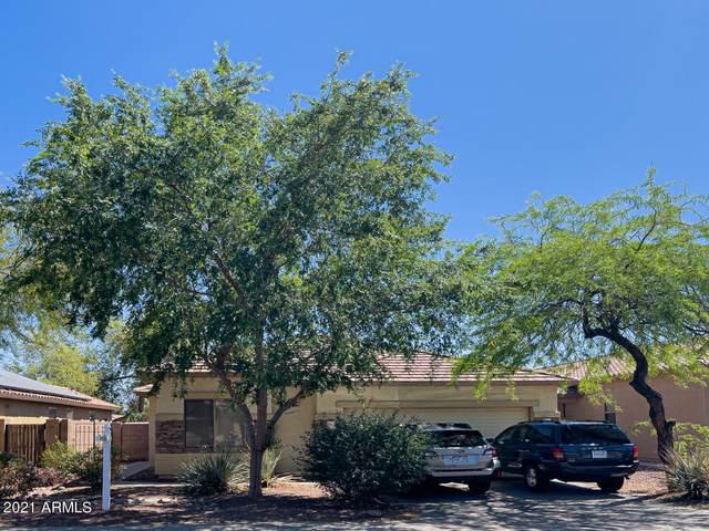 12625 W Cercado Lane, Litchfield Park, AZ 85340 (MLS #6226762) :: The Luna Team