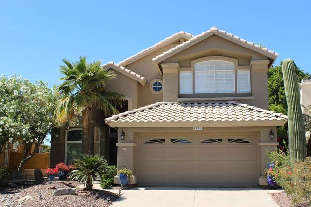 1406 E Nighthawk Way, Phoenix, AZ 85048 (MLS #6226764) :: Conway Real Estate
