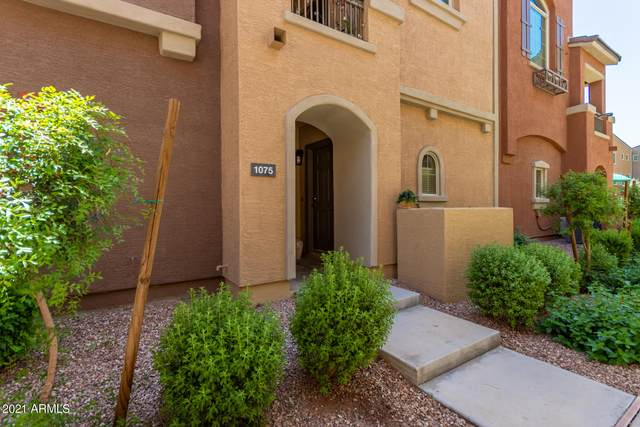 240 W Juniper Avenue #1075, Gilbert, AZ 85233 (MLS #6226862) :: Kepple Real Estate Group