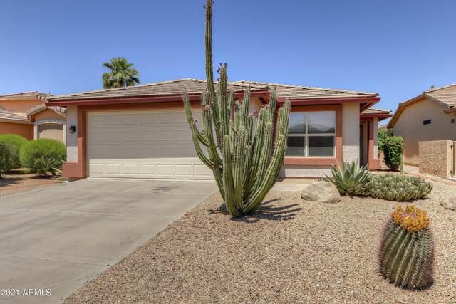 3412 E Cherry Hills Place, Chandler, AZ 85249 (MLS #6226871) :: The Luna Team