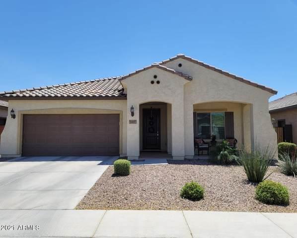 10843 E Thatcher Avenue, Mesa, AZ 85212 (#6226894) :: The Josh Berkley Team