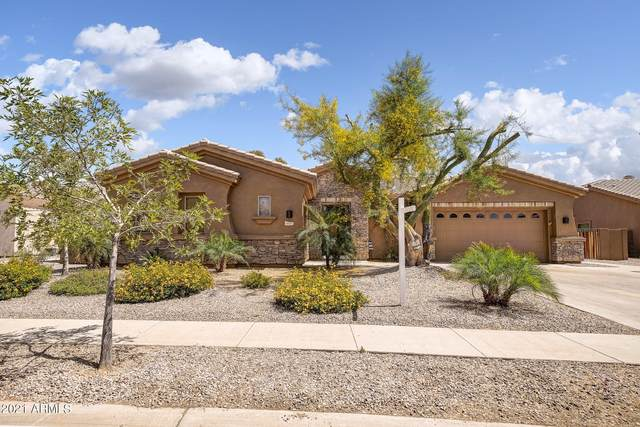 4555 E Timberline Court, Gilbert, AZ 85297 (MLS #6226908) :: Zolin Group