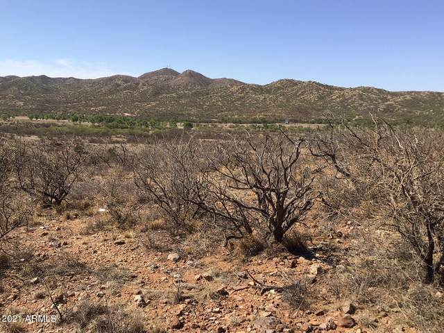 TBD Julie Ann Road, Rio Rico, AZ 85648 (MLS #6226915) :: West Desert Group | HomeSmart